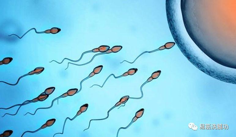 """最补精子的方法都在这里了:坚持做,让你""""精""""力十足!"""